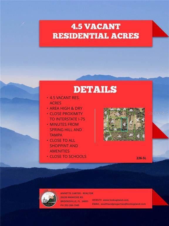 3062 Endsley Road, Brooksville, FL 34604 (MLS #W7816431) :: Team TLC | Mihara & Associates