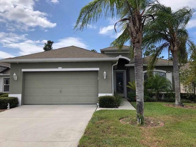 14843 Potterton Circle, Hudson, FL 34667 (MLS #W7816468) :: Premium Properties Real Estate Services