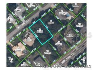 Lot5 Candler Avenue, Spring Hill, FL 34609 (MLS #W7816475) :: Ideal Florida Real Estate