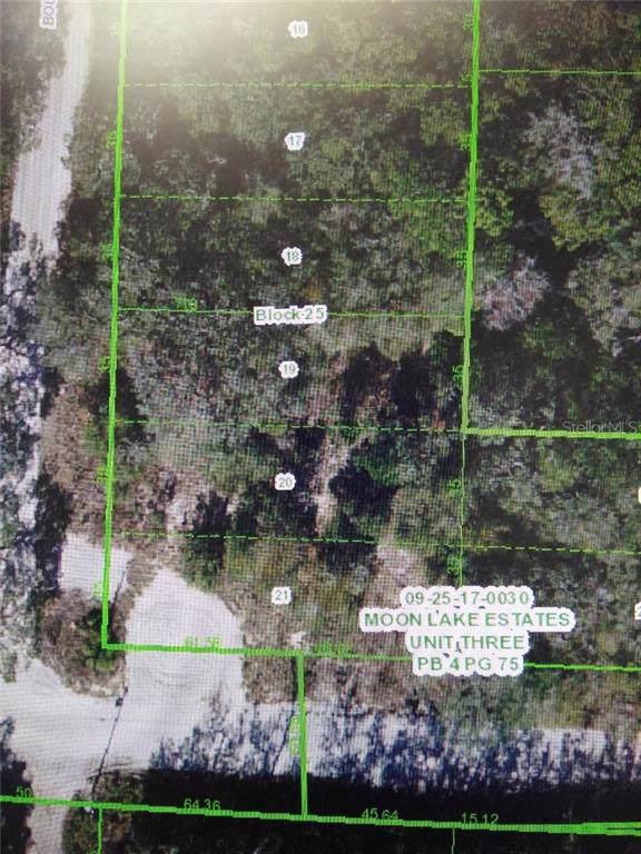 0 Bounty Street, New Port Richey, FL 34654 (MLS #W7817016) :: Bustamante Real Estate