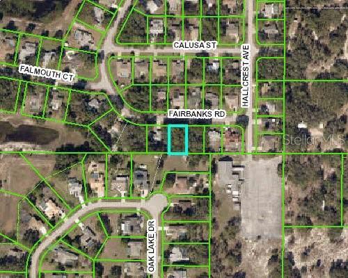 391 Fairbanks Road, Spring Hill, FL 34608 (MLS #W7817031) :: 54 Realty