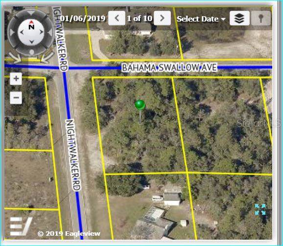 7366 Bahama Swallow Avenue, Weeki Wachee, FL 34613 (MLS #W7817263) :: RE/MAX Realtec Group