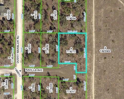 13425 Ravilla Avenue, Weeki Wachee, FL 34614 (MLS #W7817269) :: RE/MAX Realtec Group
