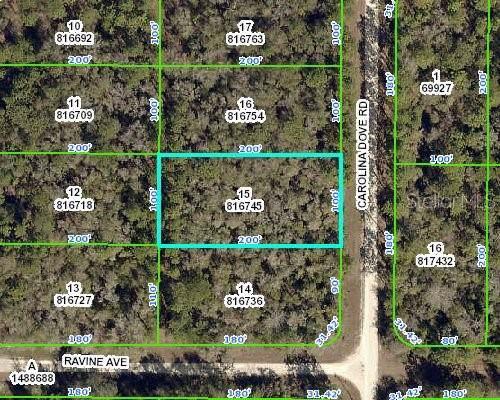 15035 Carolina Dove Road, Weeki Wachee, FL 34614 (MLS #W7817271) :: RE/MAX Realtec Group