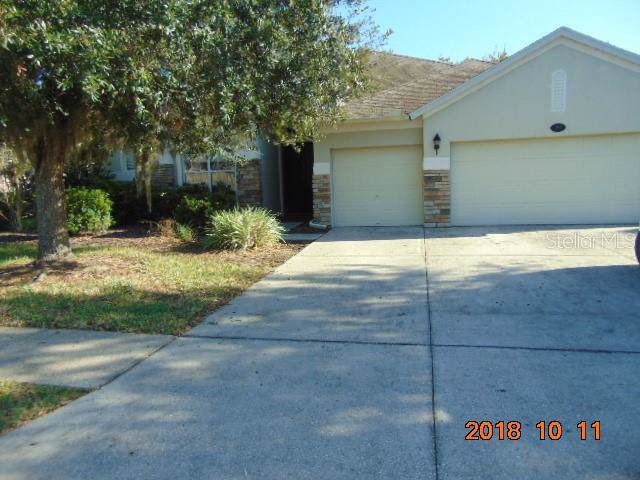 16916 Ivy Lake Drive, Odessa, FL 33556 (MLS #W7817291) :: Young Real Estate