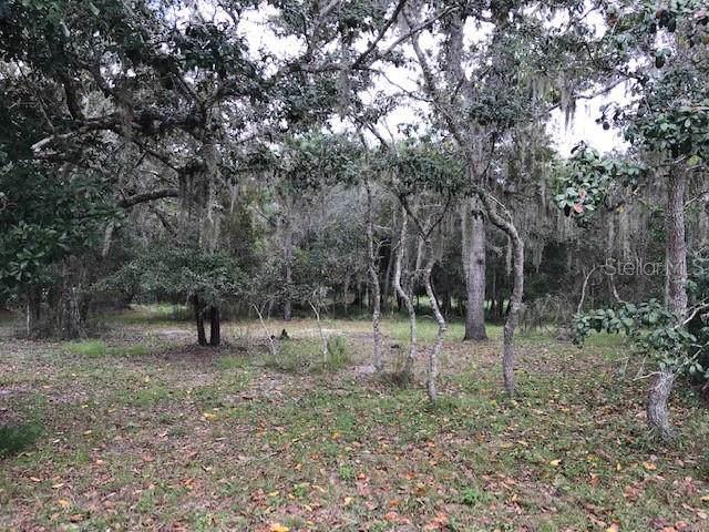 10640 Jacamar Drive, New Port Richey, FL 34654 (MLS #W7817537) :: Premium Properties Real Estate Services
