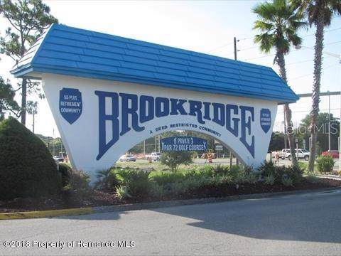 Address Not Published, Brooksville, FL 34613 (MLS #W7817736) :: Cartwright Realty