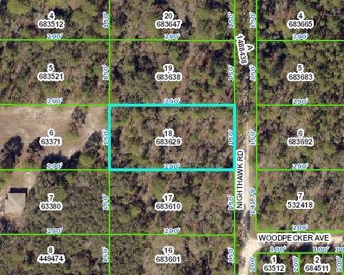 17479 Nighthawk Road, Weeki Wachee, FL 34614 (MLS #W7817785) :: Griffin Group