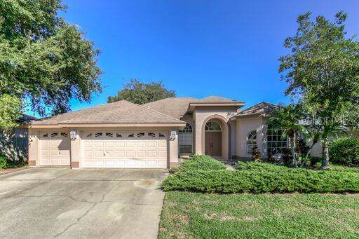 8531 Orsi Court, Trinity, FL 34655 (MLS #W7817962) :: Team Borham at Keller Williams Realty