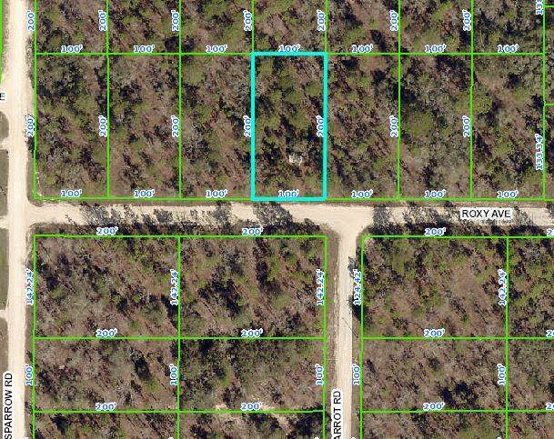 13213 Roxy Avenue, Weeki Wachee, FL 34614 (MLS #W7818023) :: Griffin Group