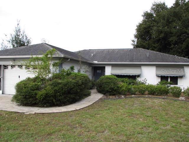 8738 Braxton Drive, Hudson, FL 34667 (MLS #W7818105) :: EXIT King Realty