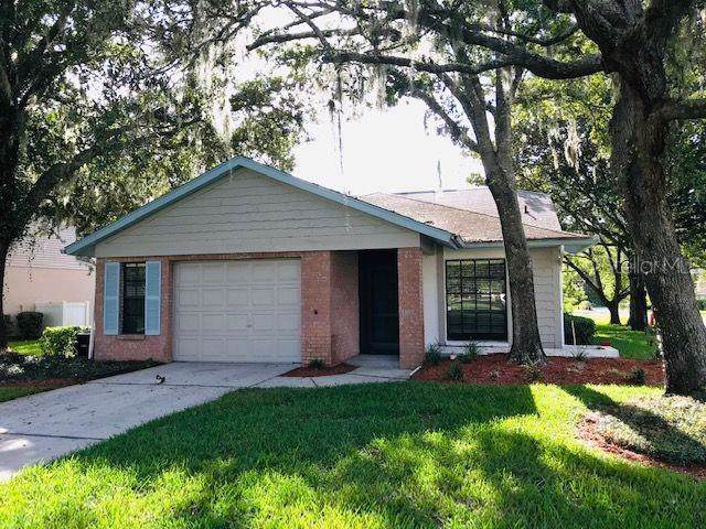 11629 Pear Tree Drive, New Port Richey, FL 34654 (MLS #W7818124) :: Lovitch Realty Group, LLC