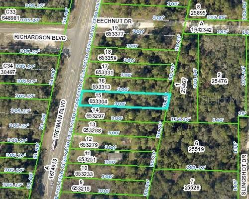 7368 Treiman Boulevard, Webster, FL 33597 (MLS #W7818148) :: Cartwright Realty