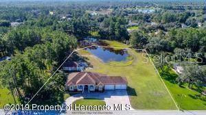 9553 Whisper Ridge, Weeki Wachee, FL 34613 (MLS #W7818153) :: Cartwright Realty