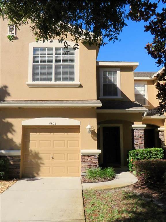 11803 Castine Street, New Port Richey, FL 34654 (MLS #W7818274) :: The Figueroa Team