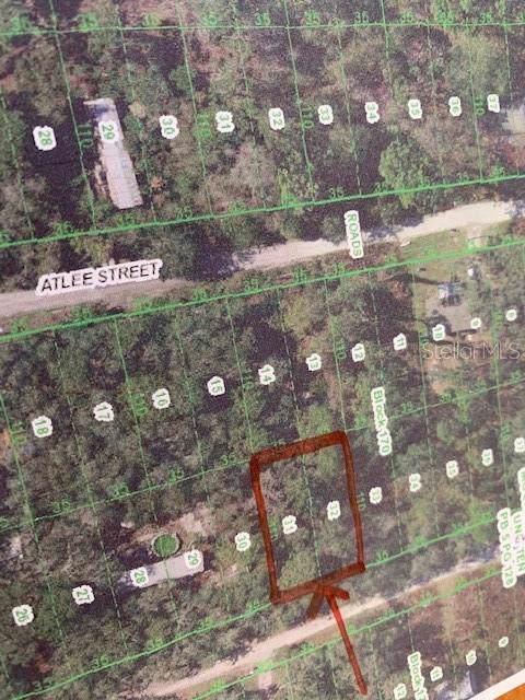LOTS 31 & 32 Evergreen Street, New Port Richey, FL 34654 (MLS #W7818565) :: 54 Realty