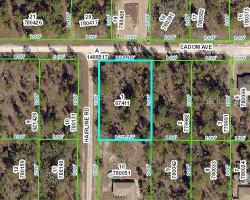 Hairline Road, Weeki Wachee, FL 34614 (MLS #W7818665) :: Premium Properties Real Estate Services