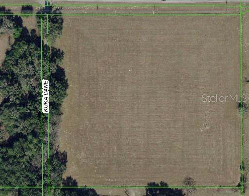 20528 County Line Road, Spring Hill, FL 34610 (MLS #W7818821) :: GO Realty