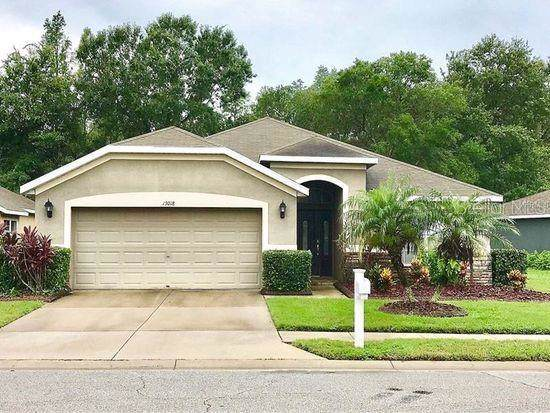 13018 Old Florida Circle, Hudson, FL 34669 (MLS #W7819545) :: GO Realty