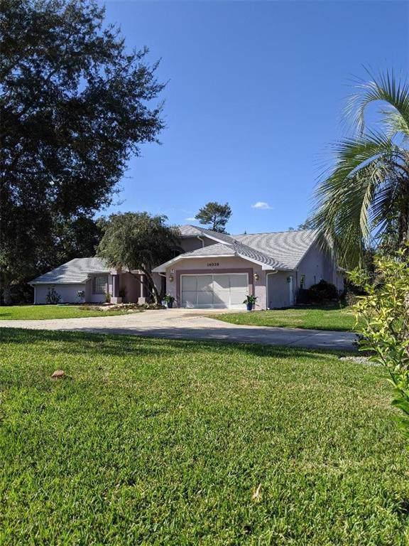 14039 Deer Trail Drive, Hudson, FL 34667 (MLS #W7819578) :: 54 Realty