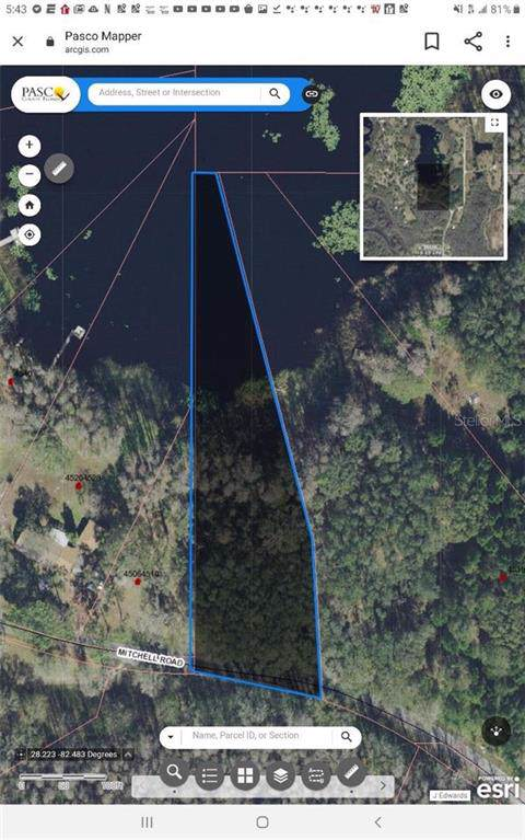Mitchell Road, Land O Lakes, FL 34638 (MLS #W7819789) :: Griffin Group