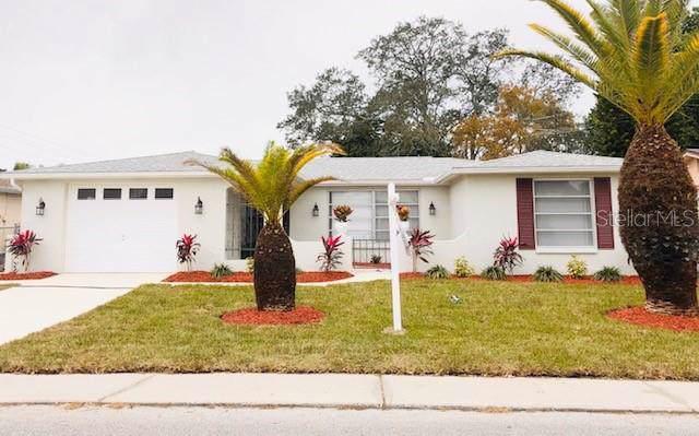 9011 Lunar Lane, Port Richey, FL 34668 (MLS #W7819941) :: Team Borham at Keller Williams Realty