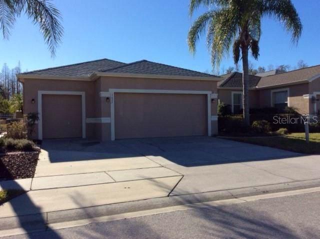 7622 Berna Lane, Land O Lakes, FL 34637 (MLS #W7819960) :: Premier Home Experts