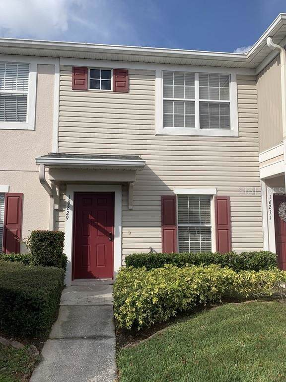 16229 Swan View Circle, Odessa, FL 33556 (MLS #W7819987) :: Premier Home Experts
