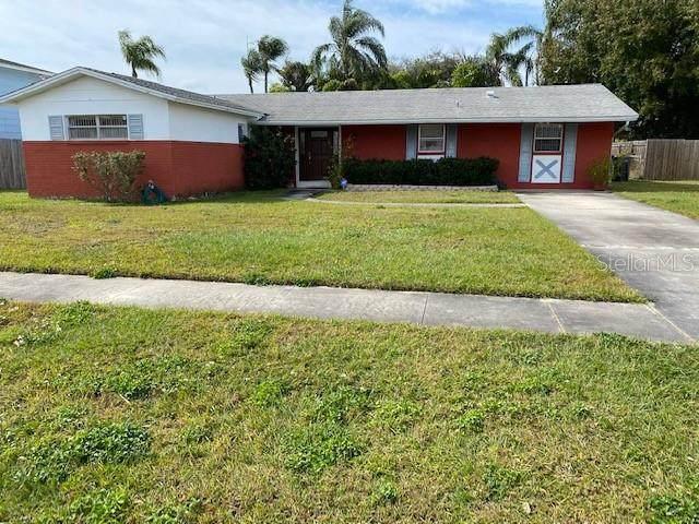 4704 Soapstone Drive, Tampa, FL 33615 (MLS #W7820500) :: Armel Real Estate