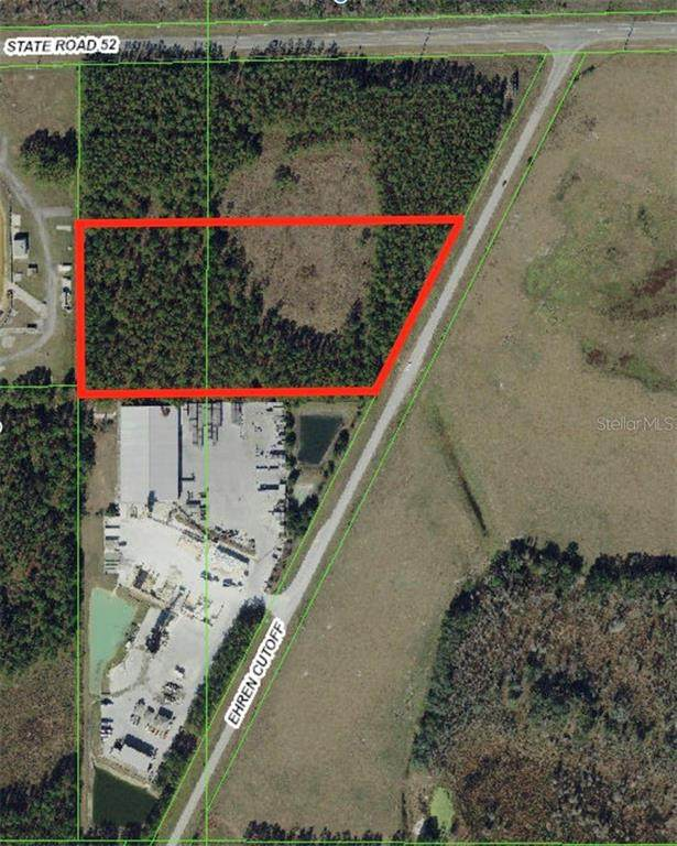 11133 Ehren Cutoff, Land O Lakes, FL 34639 (MLS #W7820574) :: Baird Realty Group