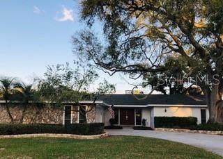 2351 Armour Drive, Dunedin, FL 34698 (MLS #W7820635) :: Dalton Wade Real Estate Group