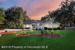 11276 Woodland Waters Boulevard, Weeki Wachee, FL 34613 (MLS #W7820666) :: Griffin Group