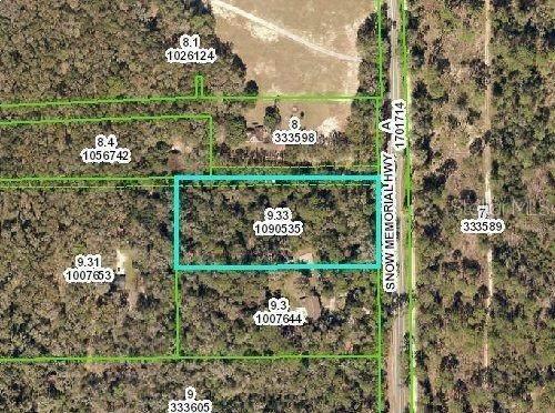 Snow Memorial Highway, Brooksville, FL 34601 (MLS #W7821415) :: Premier Home Experts
