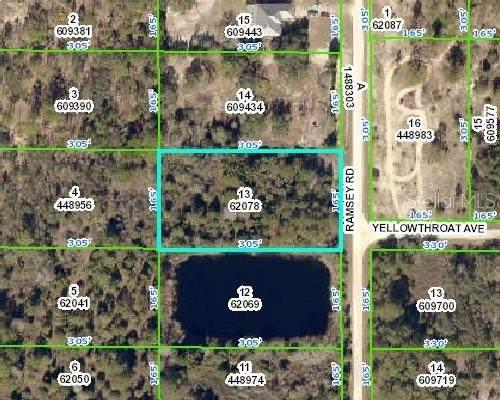Ramsey Road, Weeki Wachee, FL 34614 (MLS #W7821825) :: Premium Properties Real Estate Services