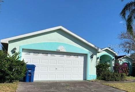8038 Pepperidge Lane, Port Richey, FL 34668 (MLS #W7822007) :: Team Bohannon Keller Williams, Tampa Properties