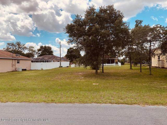 15436 Arvin Drive, Brooksville, FL 34604 (MLS #W7822056) :: Homepride Realty Services