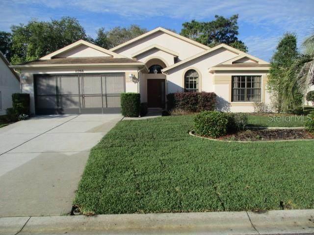 11266 Richford Lane, Spring Hill, FL 34609 (MLS #W7822150) :: The A Team of Charles Rutenberg Realty