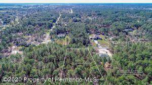 Oakcrest Circle, Brooksville, FL 34604 (MLS #W7823140) :: Baird Realty Group
