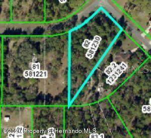 Oakcrest Circle, Brooksville, FL 34604 (MLS #W7823142) :: Team Borham at Keller Williams Realty