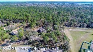 4340 Krupke Circle, Brooksville, FL 34604 (MLS #W7823144) :: Baird Realty Group