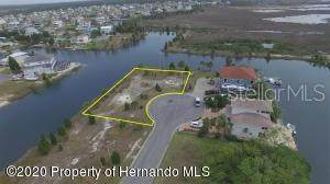 3210 Lugustrum Drive, Hernando Beach, FL 34607 (MLS #W7823179) :: Mark and Joni Coulter | Better Homes and Gardens