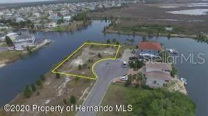 3210 Lugustrum Drive, Hernando Beach, FL 34607 (MLS #W7823179) :: The Duncan Duo Team