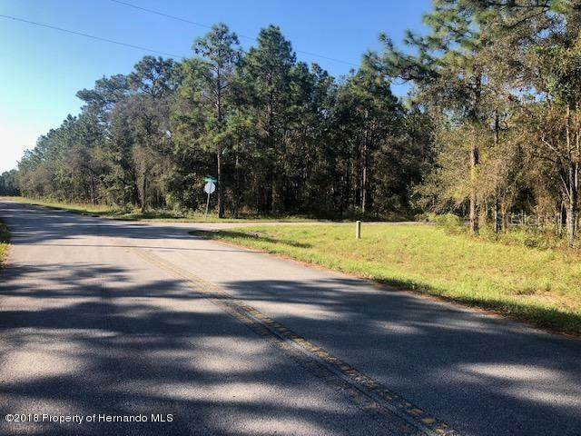 Jumper (Divine Lot 20) Loop, Spring Hill, FL 34609 (MLS #W7823182) :: Heckler Realty