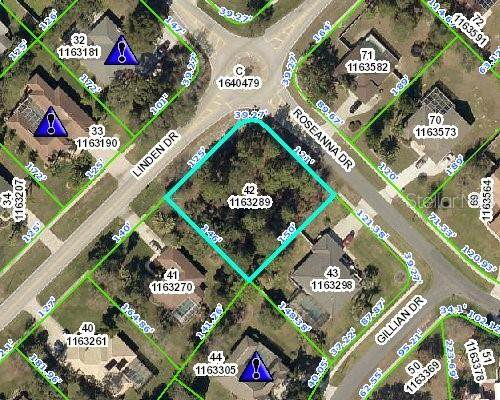 14661 Linden Drive, Spring Hill, FL 34609 (MLS #W7823228) :: The Duncan Duo Team