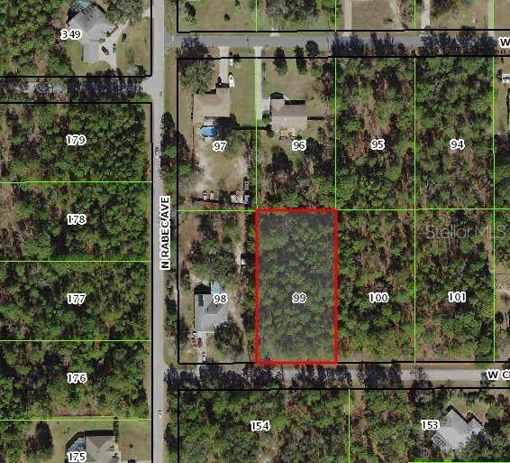 2283 W Christine Lane, Lecanto, FL 34461 (MLS #W7823339) :: Realty Executives Mid Florida