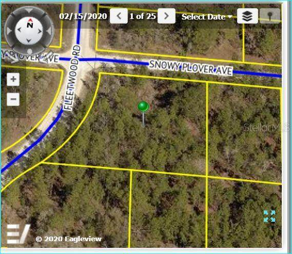15066 Fleetwood Road, Brooksville, FL 34614 (MLS #W7824038) :: Griffin Group