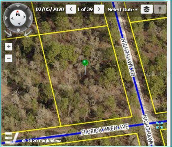 18089 Nighthawk Road, Weeki Wachee, FL 34614 (MLS #W7824078) :: Griffin Group
