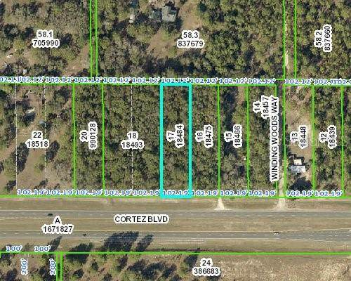0 Cortez Boulevard Lot 17, Brooksville, FL 34602 (MLS #W7824090) :: Griffin Group