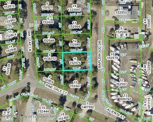 Maplewood Drive, Hernando Beach, FL 34607 (MLS #W7824146) :: Bustamante Real Estate