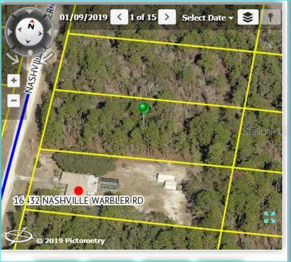 16448 Nashville Warbler Road, Weeki Wachee, FL 34614 (MLS #W7824189) :: Griffin Group